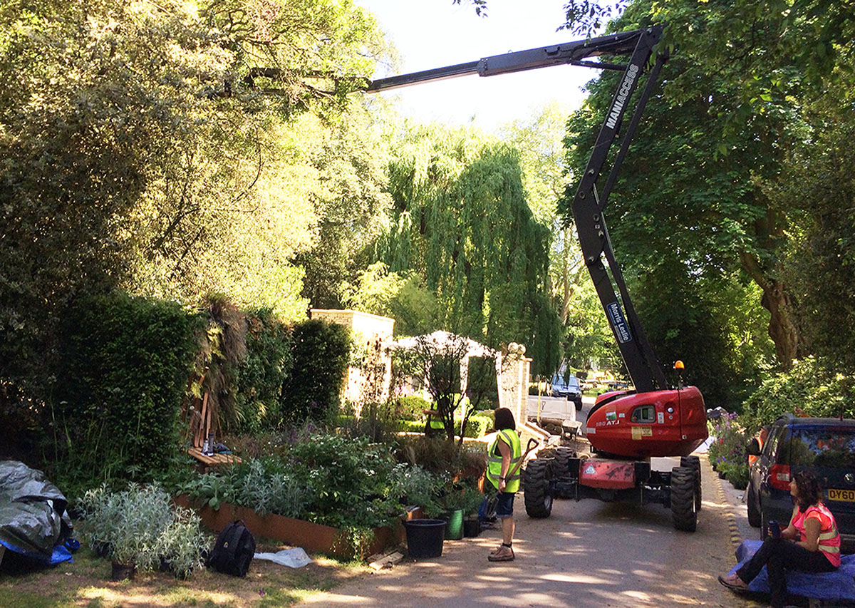 A slight delay in planting today as the RHS decide to do some tree pruning directly above our garden