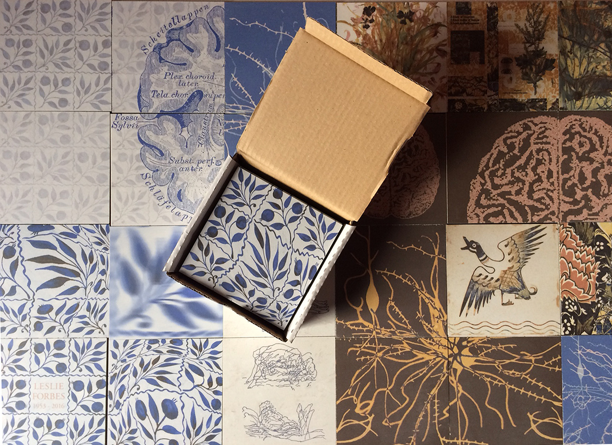 A selection of the ceramic tiles for our path - just arrived